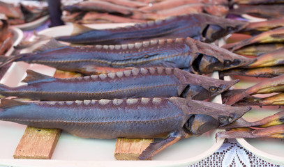 Closup picture of Russian sturgeon placed at the counter