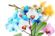 Orchideen 101