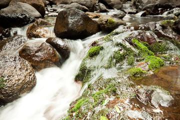 cascading waters (Lamington National Park,QLD,Australia)