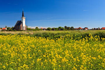 Church and flower field on a sunny day