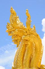 Golden Na ga head