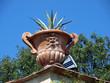 Florence - ceramic bowl decorated in the Boboli Gardens