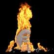 der Euro brennt