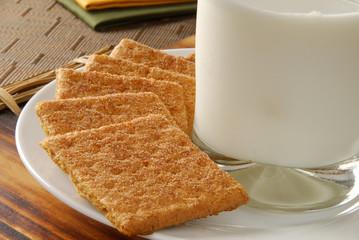 Closeup of cinnamon sprinkled graham crackers