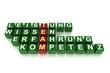 Team-Würfel Rot grün
