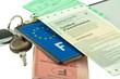 plaque immatriculation, carte grise, assurance, permis, clés