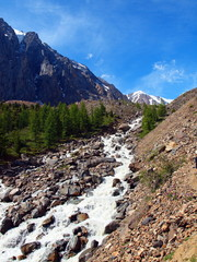 River heads Aktru, mountain Altai