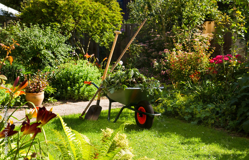 Foto op Plexiglas Tuin Working with wheelbarrow in the garden
