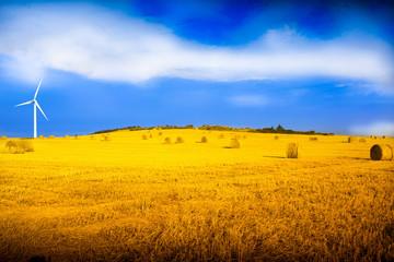 turbina eolica in campo di grano
