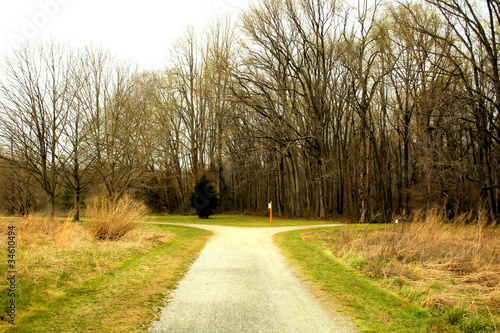 Country road in rural area.