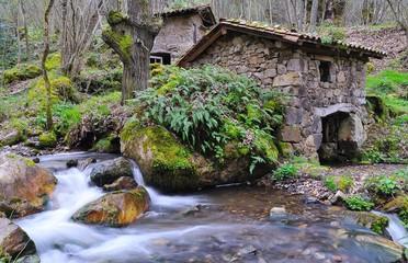 Antiguo molino harinero.