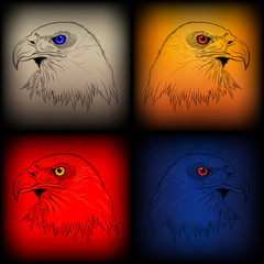 Set of vector eagles in various colors