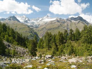 Forêt, vallée et massif du Trift