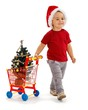 Little boy pulling shopping cart with Xmas tree