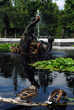 Im Springbrunnen badende Enten