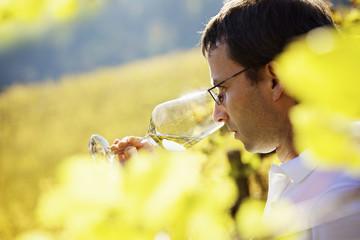 Wine grower tasting wine.