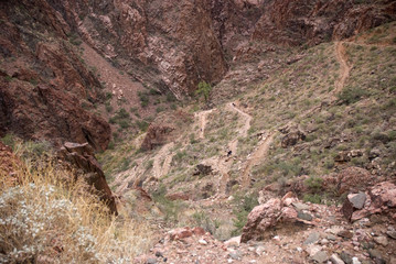 Grand Canyon trail