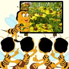 im Bienenstock