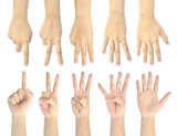 set counting number 1-5 of woman hand