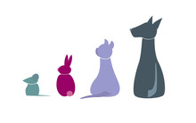 Veterinary Icons of Animals, Colorful pets