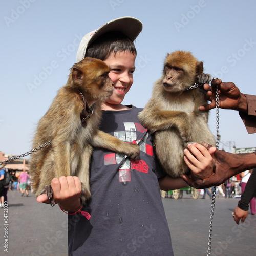 Dresseur de singes à Marrakech Poster