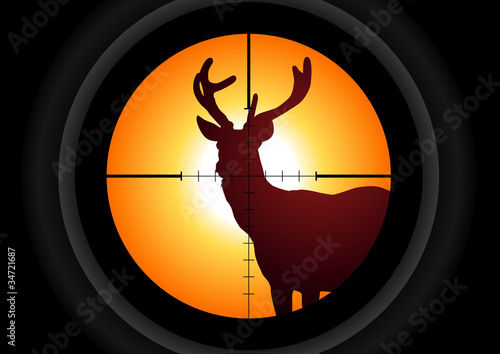 Vector illustration of a rifle lens aiming a deer