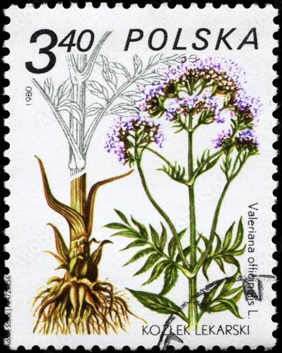 POLAND - CIRCA 1980 Valerian