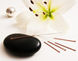 Leinwandbild Motiv Akupunktur und Massage