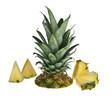 Ananass mit Dreiecken