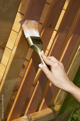 woman's hand with a paint brush painting wooden terrace