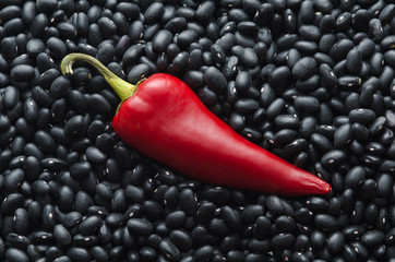 Red chili pepper on black beans background