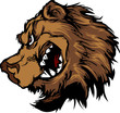 Bear Grizzly Mascot Head Cartoon