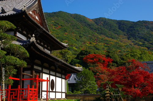 日本の寺院と紅葉 Autumn tint and temple in Japan