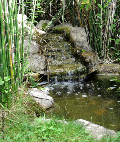 Leinwanddruck Bild petite source de jardin aquatique