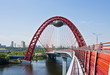 """Pictorial bridge"", Moscow"