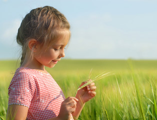 Little girl in wheat field