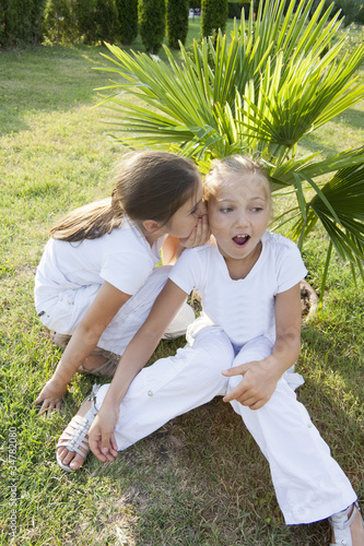 The little girl tells a secret to the friend