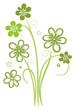Ranke, flora, Blumen, Blüten, Grüntöne, Grün, Hellgrün