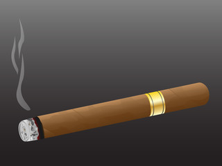 Cigar. Vector.