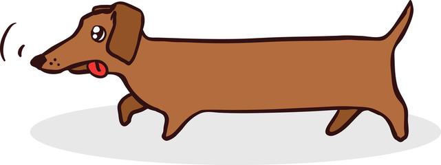 Badger-dog