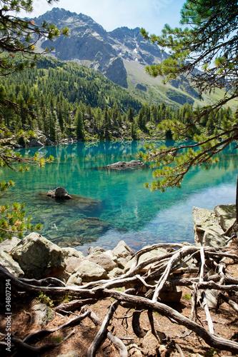 lake-saoseo-grisons-szwajcaria