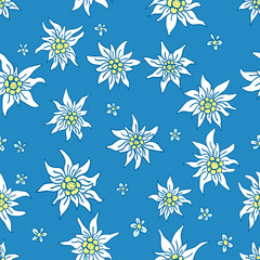 Hand drawn seamless pattern: edelweiss and little flowers