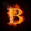 Alphabet_Fire_B_002(4).jpg