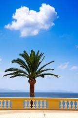 Méditerranée (Ajaccio, Corse)