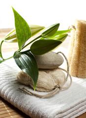 serviette de bain lys et savon bio