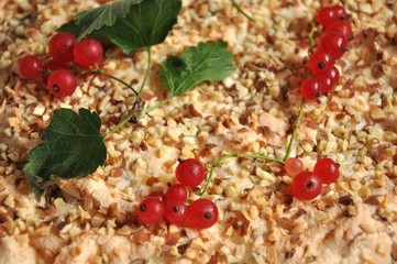 Redcurrant berries and leafs on cake