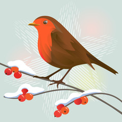 Robin&snowflake