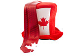 Canada day national holiday apparels poster