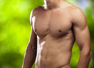 perfect torso