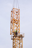 Setting up a tower crane.  Tower mast is erected. poster